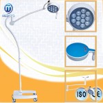 Hot Sale Checking Light Mobile with Battery LED Examination Lamp Ecog054 Cold Light