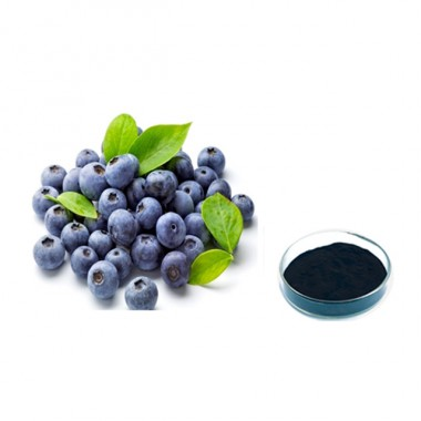ISO Certificated 100% Natural Blueberry Extract Powder Anthocyanosides