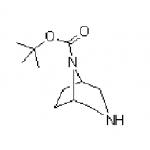 3,8-Diazabicyclo[3.2.1]octan-8-carboxylic acid tert-butyl ester