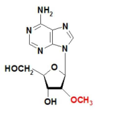 2-OMe Adenosine