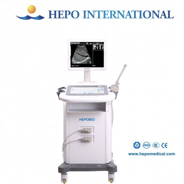 Cheap Price Medical Equipment Digital B&W Ultrasound Scanner